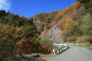 丸山林道の紅葉