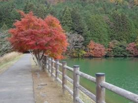 2南伊奈ケ湖