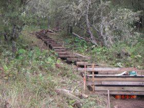 工事中の木道